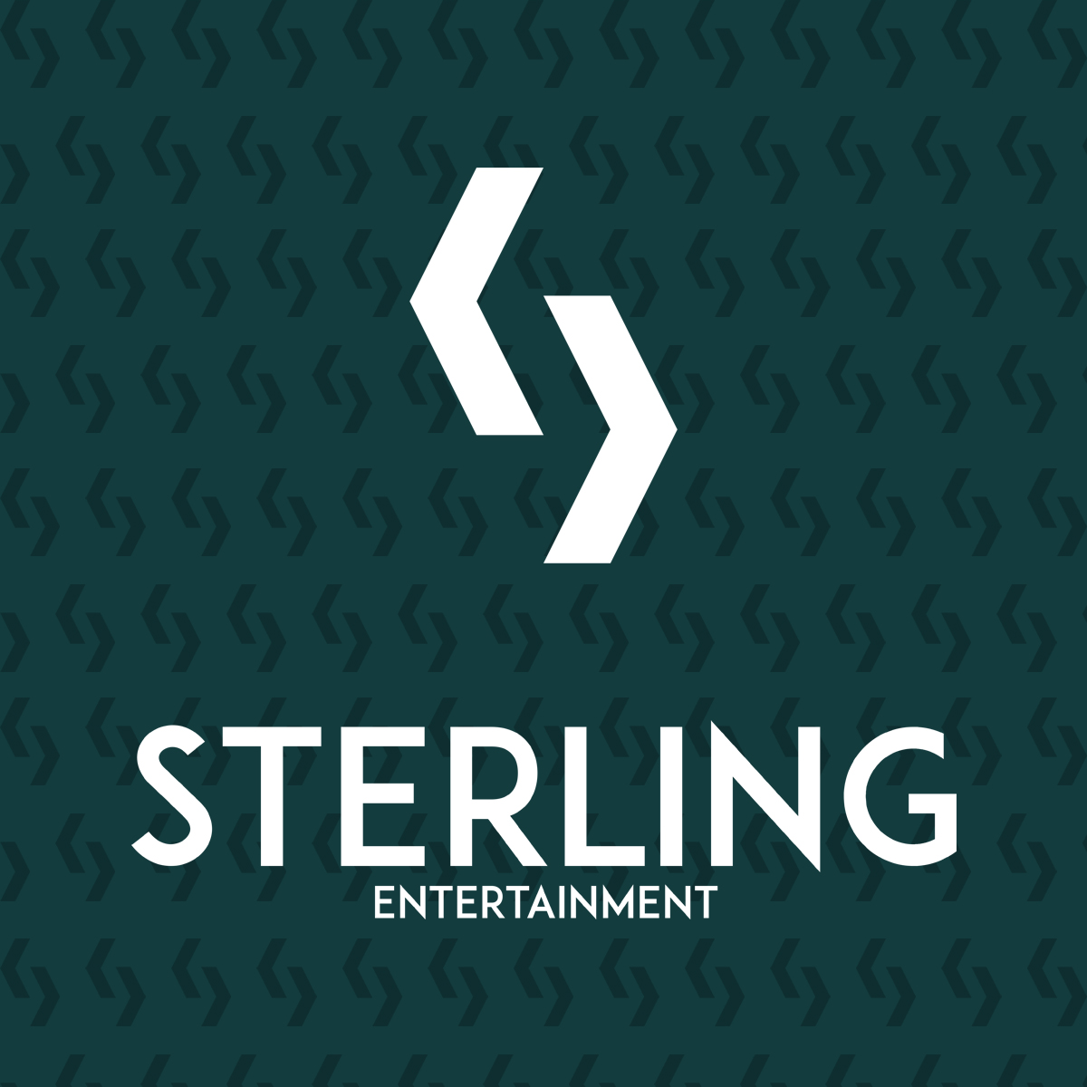 branding-creative-agency-logo design-community-marketing-web design-social media-business cards-sterling entertainment-print design